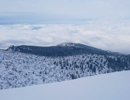 borovets ski review