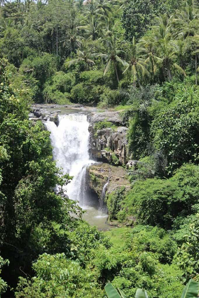 things to do in bali with kids, bali waterfall, top things to do in bali