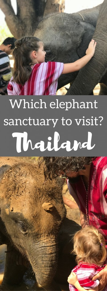 ethical elephant sanctuary thailand