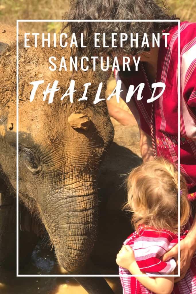 ethical elephant sanctuary thailand, elephant volunteer thailand