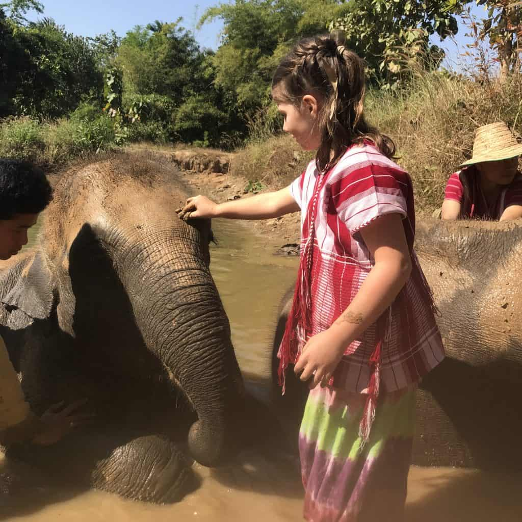 Ethical elephant sanctuary Thailand. elephant volunteer thailand