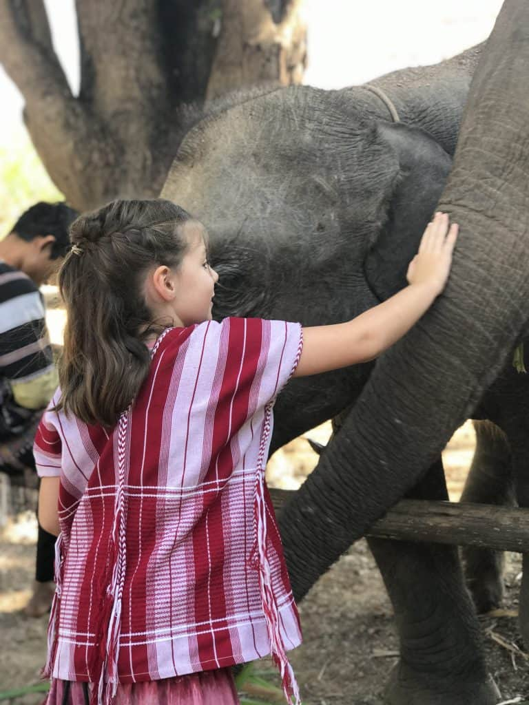 ethical elephant sanctuary thailand, elephant volunteer thailand
