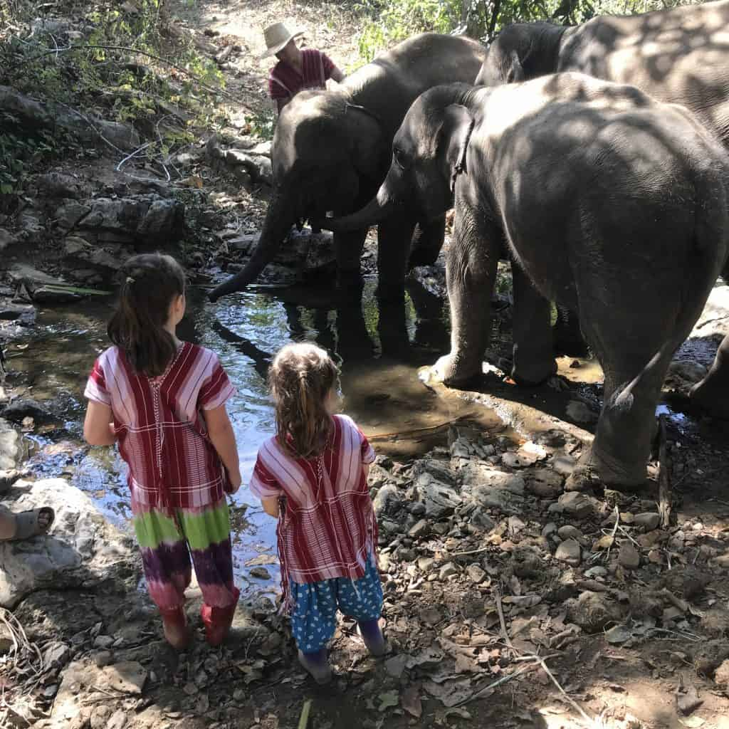 Ethical elephant sanctuaries Thailand