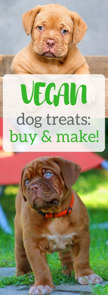 Vegan Dog Treats The Best Of Store Bought And Home Made