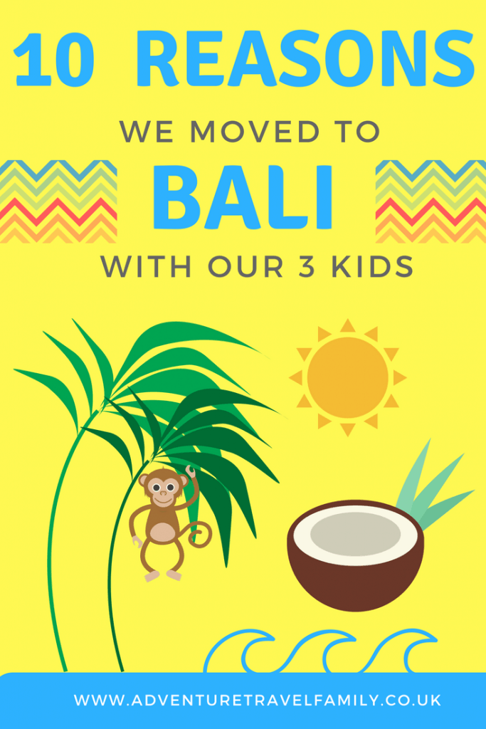 bali sun, coconuts, monkeys and palm trees