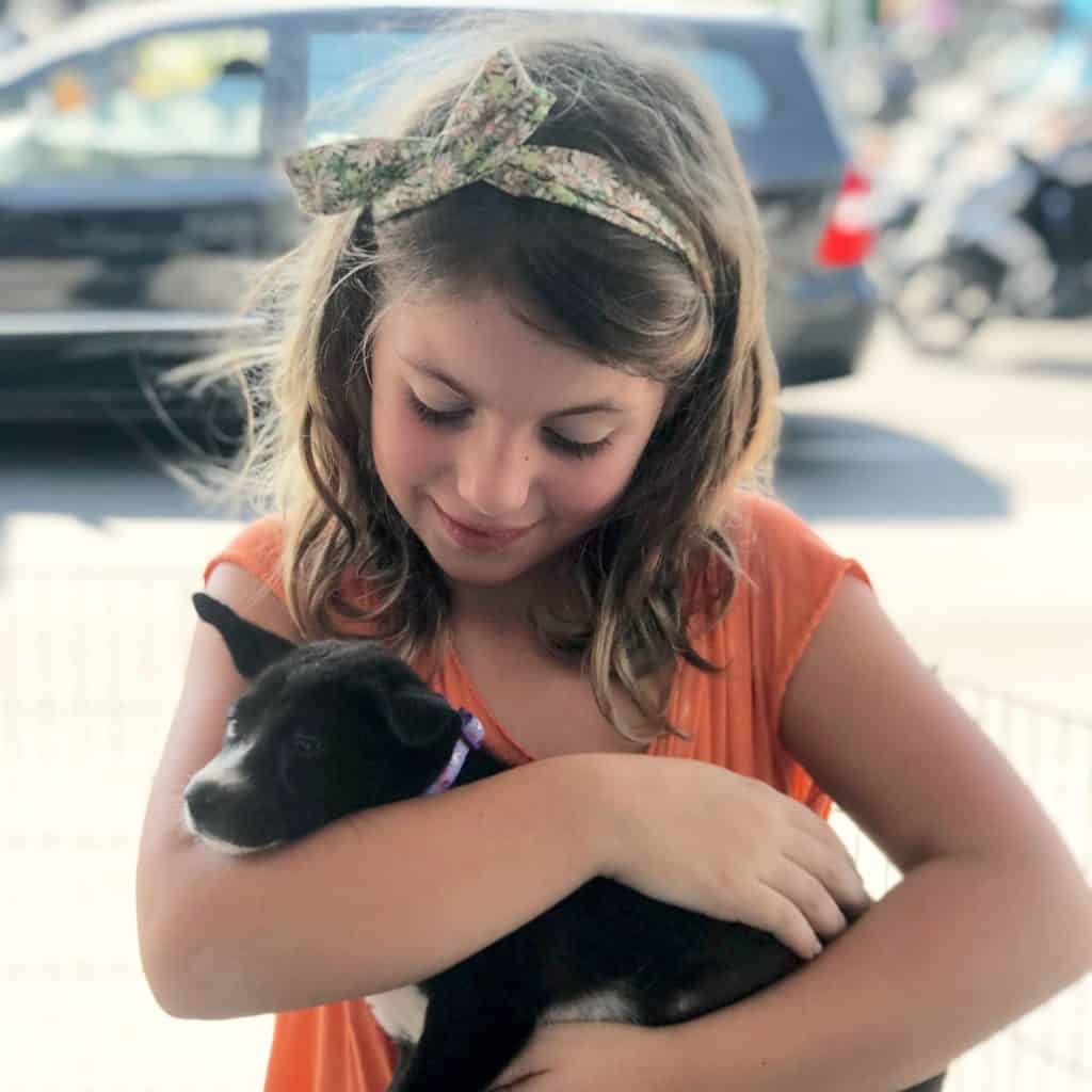 Fostering Puppies: Our Experience As Bali Dogs Volunteer (And How You Can Do It Too!)