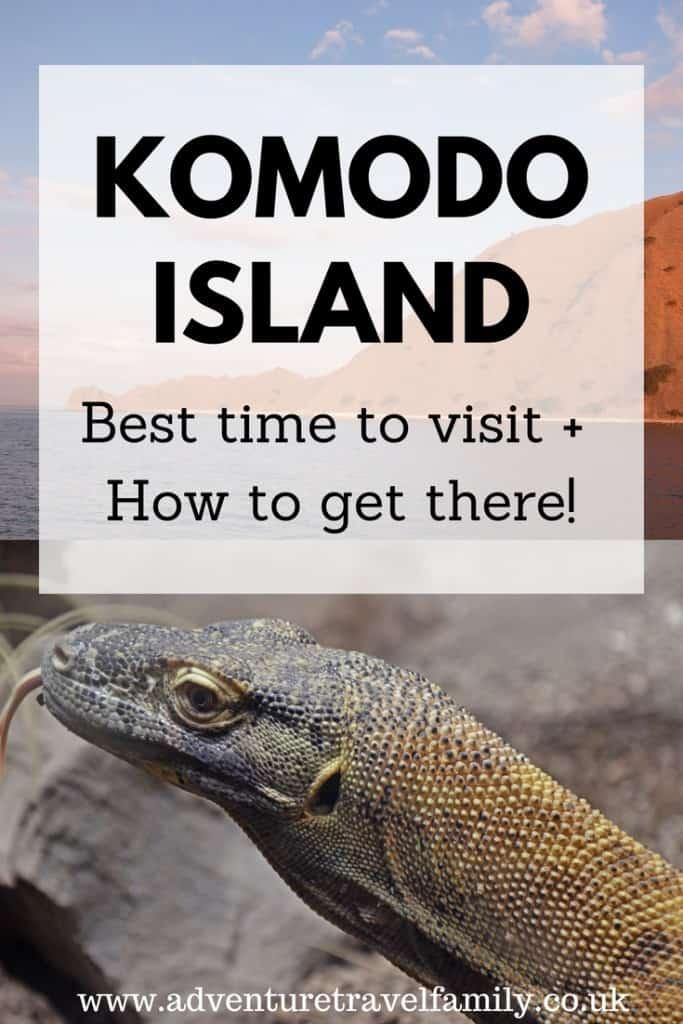 komodo dragon + komodo island