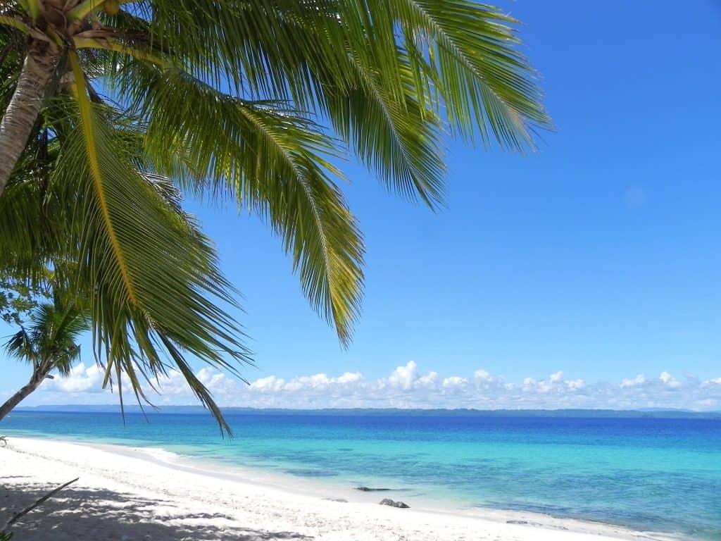 vegan philippines beach
