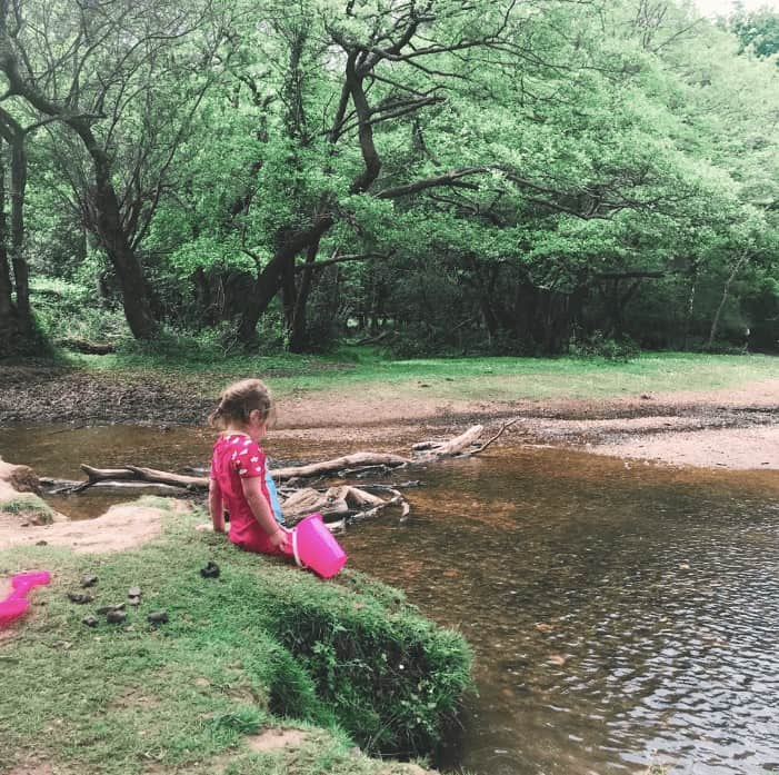 things to do in the new forest